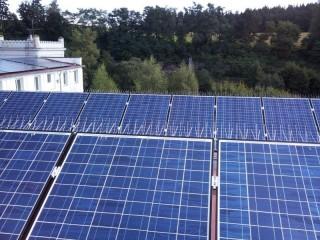 Ochrana proti holubům - fotovoltaická elektrárna Světlá nad Sázavou