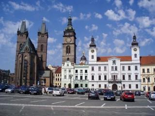 Ochrana proti holubům Bílá věž Hradec Králové