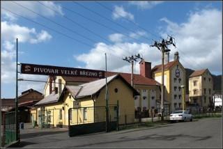 Ochrana proti holubům Pivovar Velké Březno