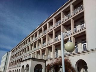 Ochrana proti vlaštovkám Rehabilitační ústav Kladruby